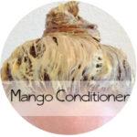 DIY mango conditioner || Shwin&Shwin