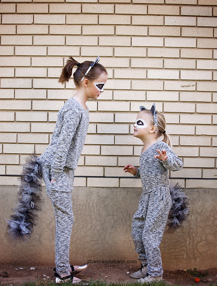 Easy Raccoon Face Paint